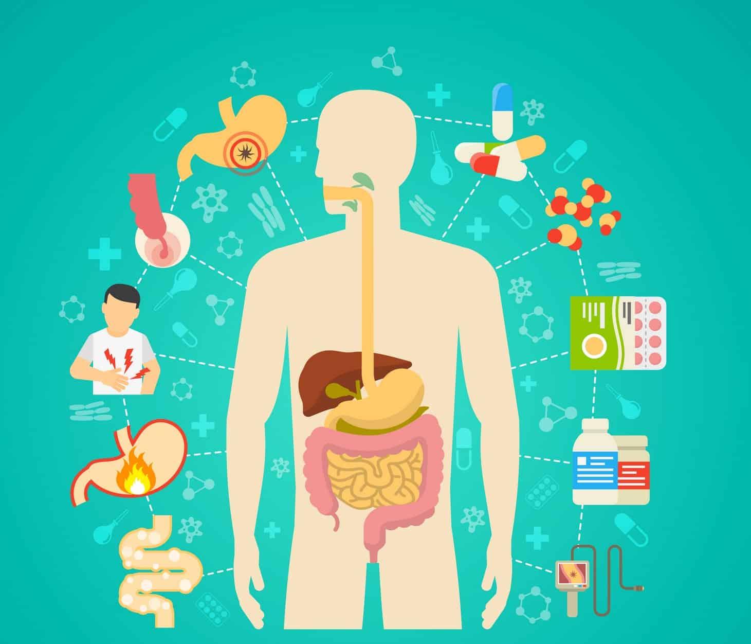 Infecciones aparato digestivo